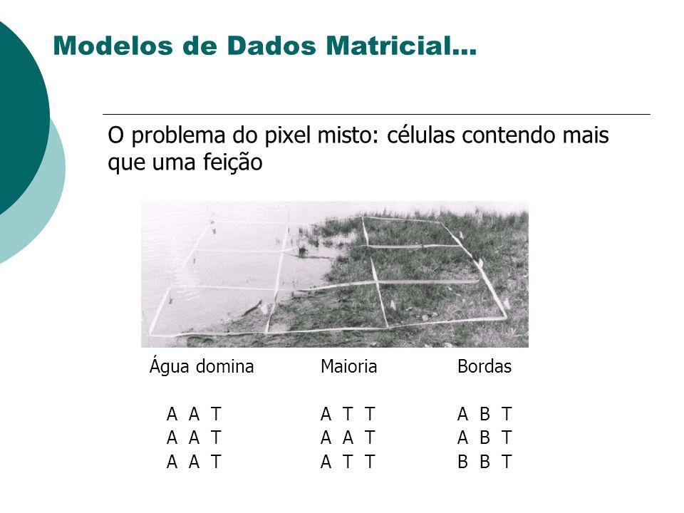 Modelos de Dados Matricial...