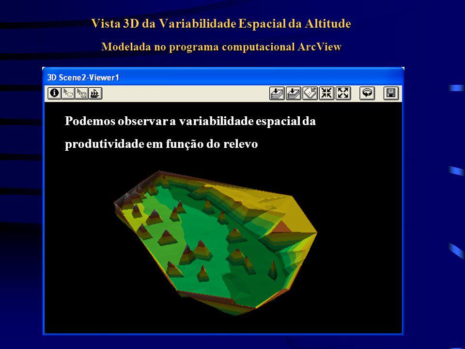 Vista 3D da Variabilidade Espacial da Altitude Modelada no programa computacional ArcView
