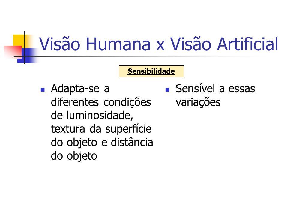 Visão Humana x Visão Artificial