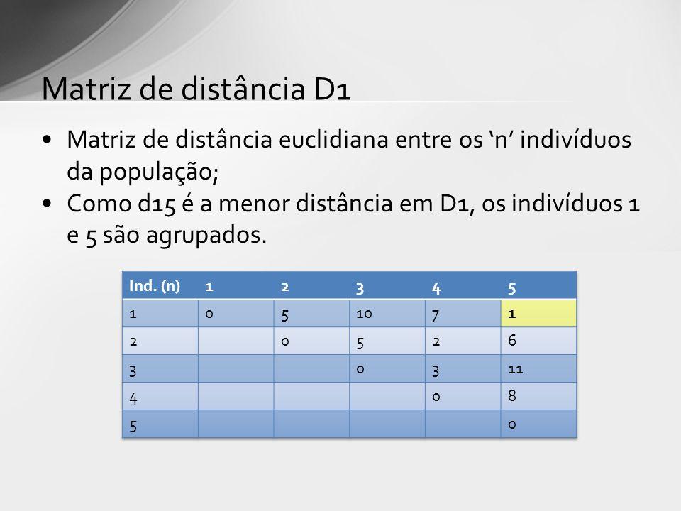 Matriz de distância D1 Matriz de distância euclidiana entre os 'n' indivíduos da população;