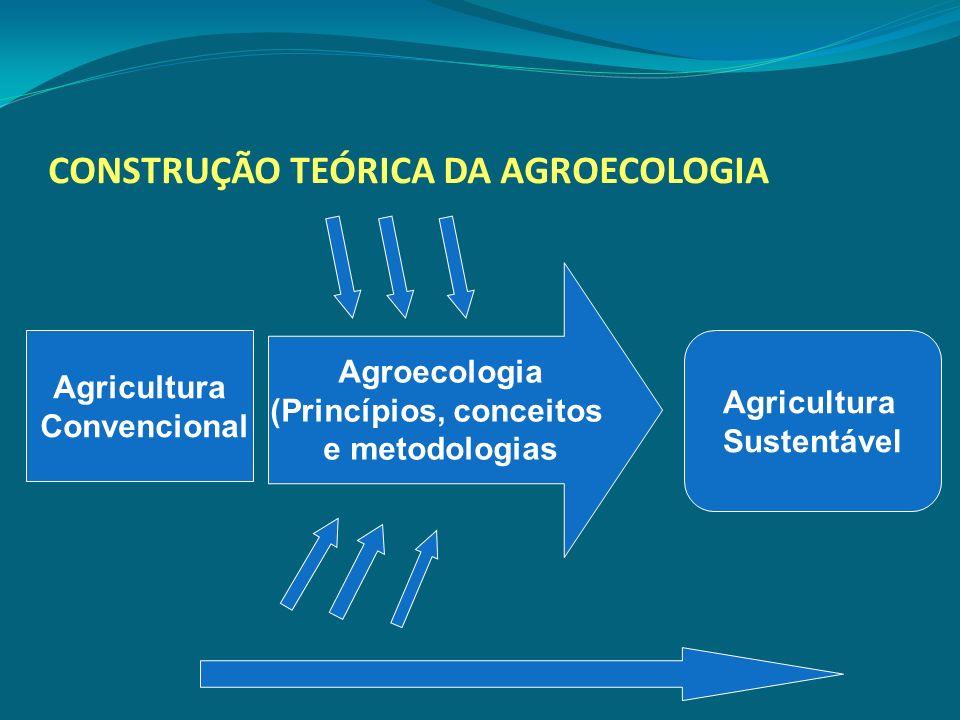 CONSTRUÇÃO TEÓRICA DA AGROECOLOGIA