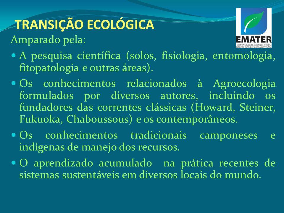 TRANSIÇÃO ECOLÓGICA Amparado pela: