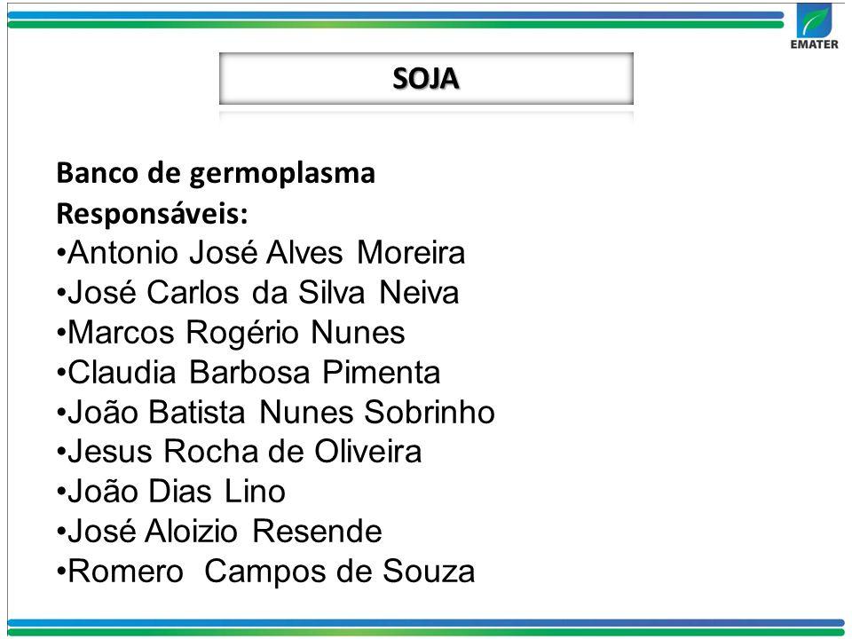 SOJA Banco de germoplasma. Responsáveis: Antonio José Alves Moreira. José Carlos da Silva Neiva.