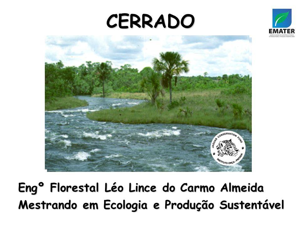CERRADO Engº Florestal Léo Lince do Carmo Almeida