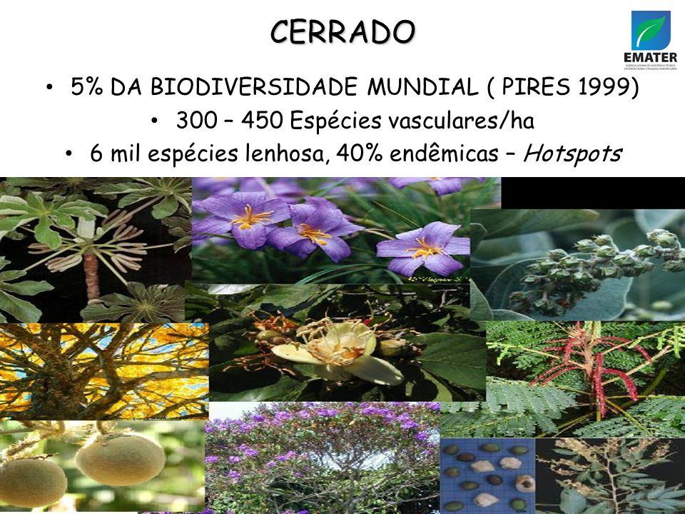 CERRADO 5% DA BIODIVERSIDADE MUNDIAL ( PIRES 1999)