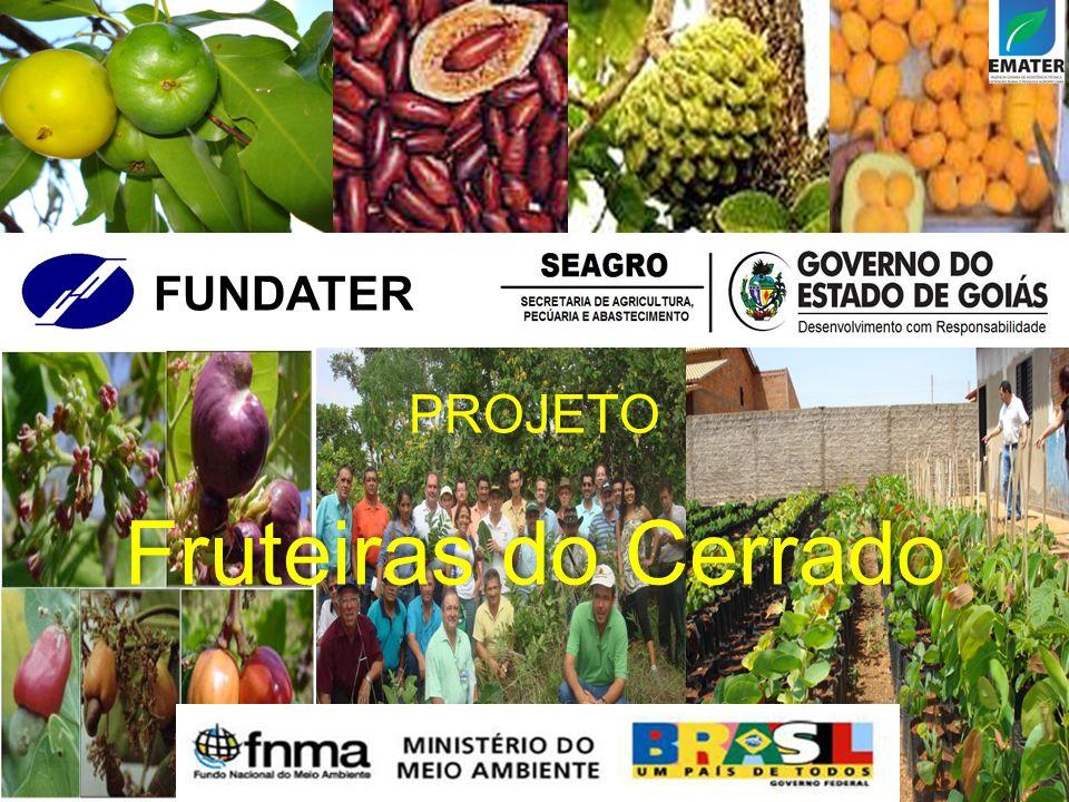 FUNDATER PROJETO Fruteiras do Cerrado