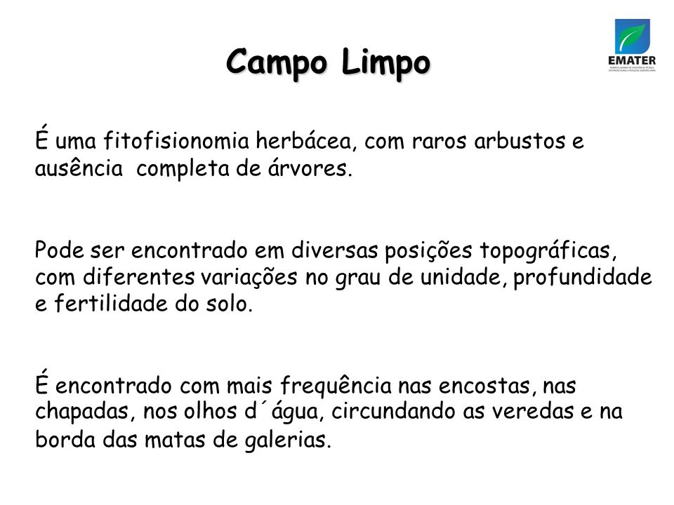 Campo Limpo É uma fitofisionomia herbácea, com raros arbustos e ausência completa de árvores.