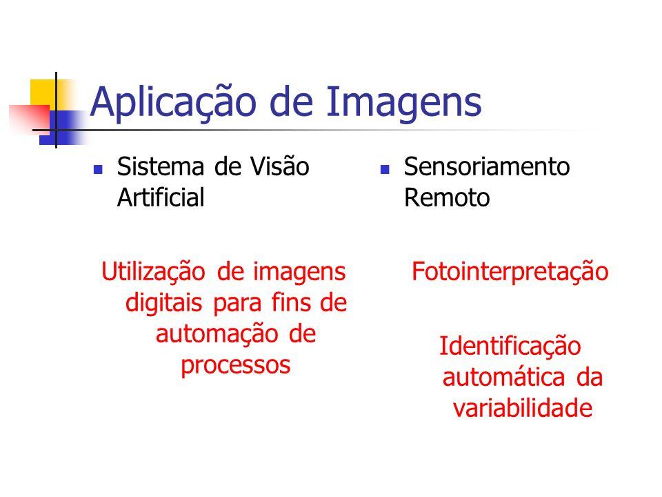 Aplicação de Imagens Sistema de Visão Artificial