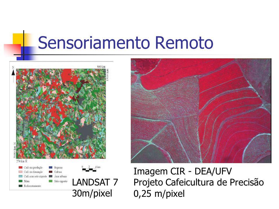 Sensoriamento Remoto Imagem CIR - DEA/UFV