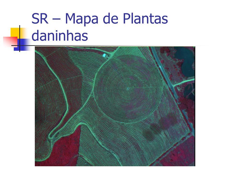 SR – Mapa de Plantas daninhas