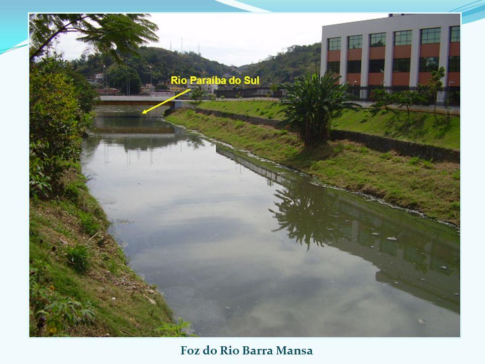Rio Paraíba do Sul Foz do Rio Barra Mansa