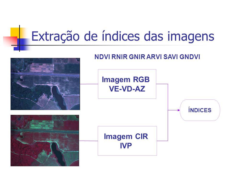 Extração de índices das imagens