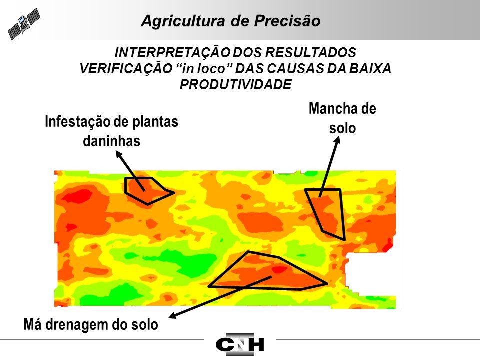 Mancha de solo Infestação de plantas daninhas Má drenagem do solo