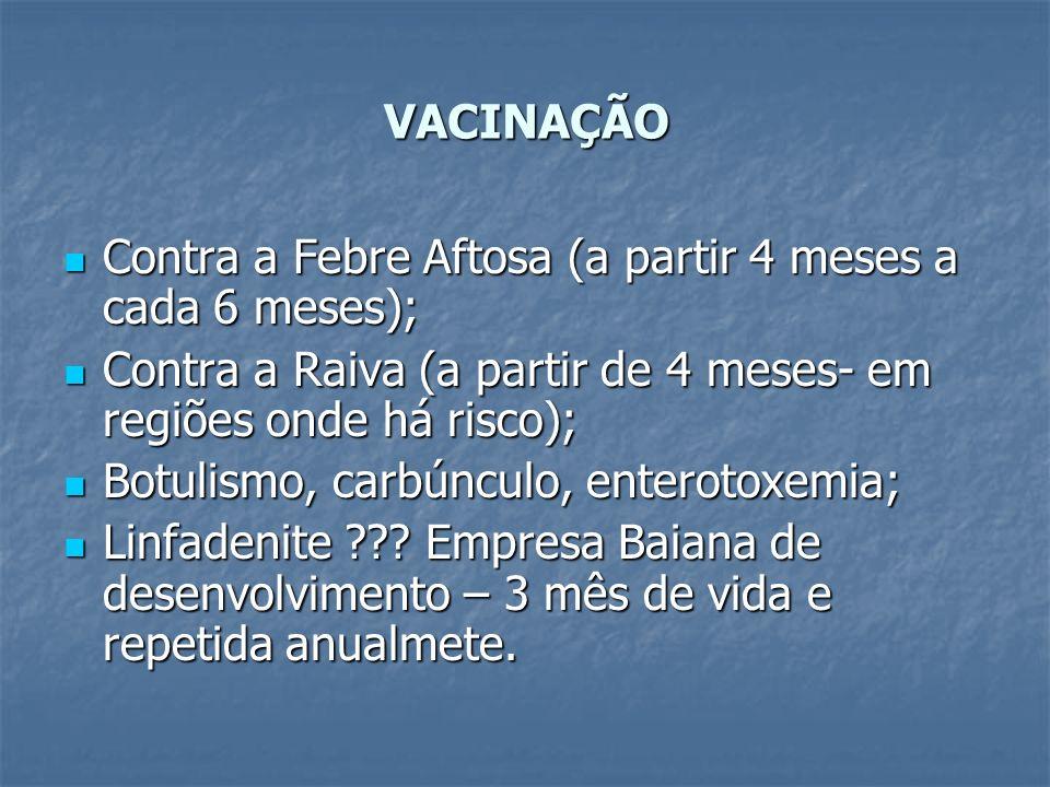 VACINAÇÃOContra a Febre Aftosa (a partir 4 meses a cada 6 meses); Contra a Raiva (a partir de 4 meses- em regiões onde há risco);