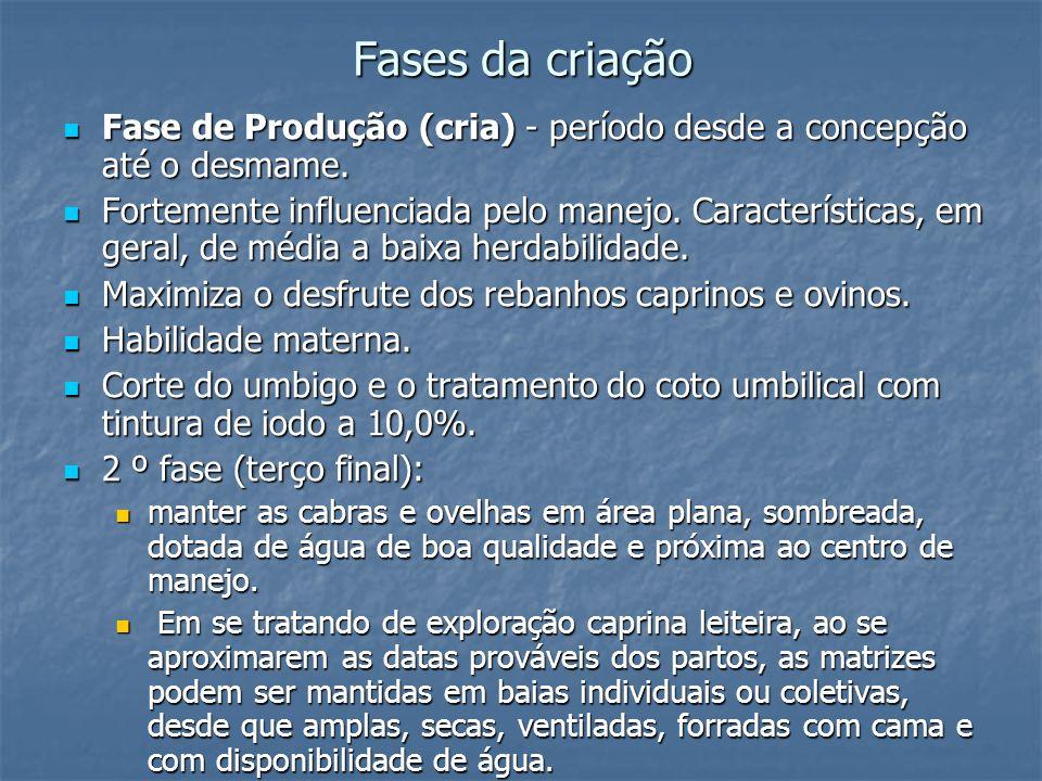 Fases da criaçãoFase de Produção (cria) - período desde a concepção até o desmame.