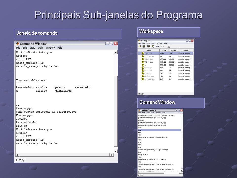 Principais Sub-janelas do Programa