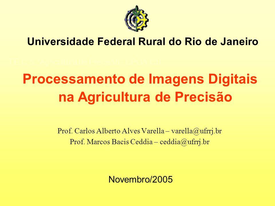 Processamento de Imagens Digitais na Agricultura de Precisão