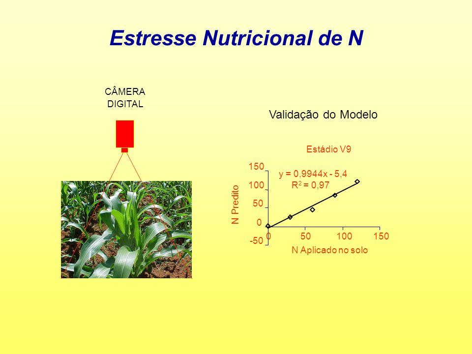 Estresse Nutricional de N