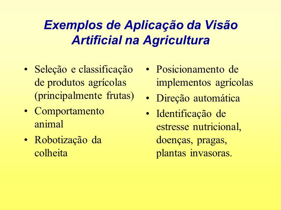 Exemplos de Aplicação da Visão Artificial na Agricultura