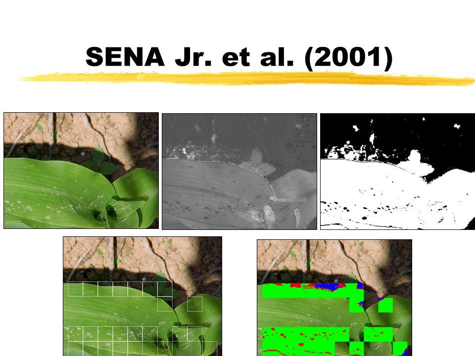 SENA Jr. et al. (2001)