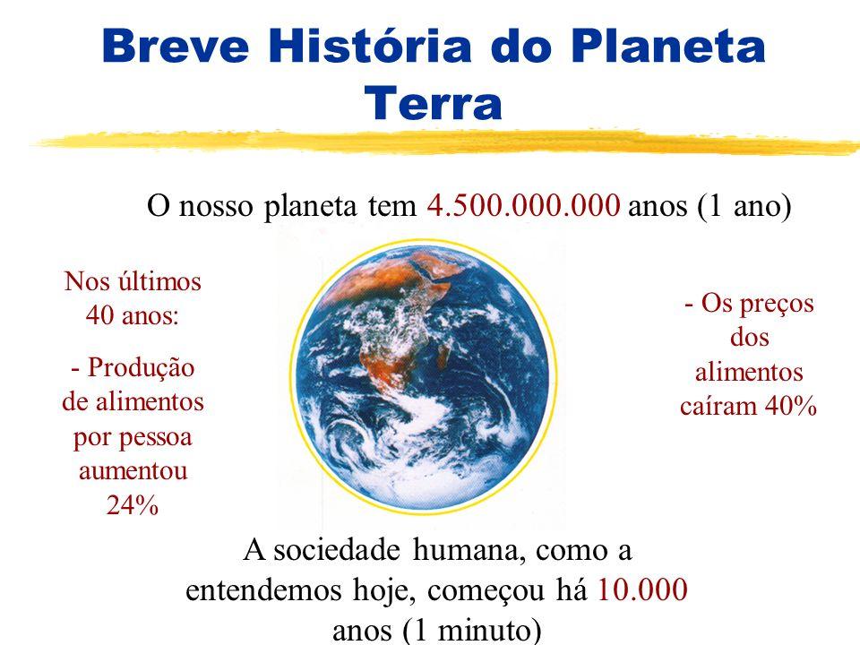 Breve História do Planeta Terra