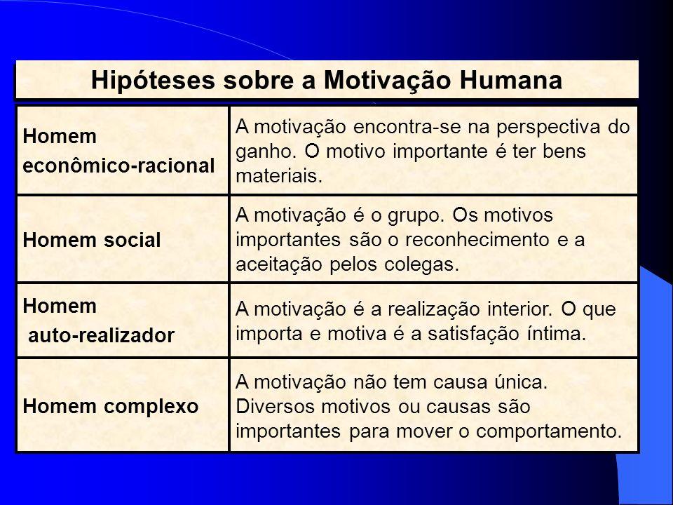 Hipóteses sobre a Motivação Humana
