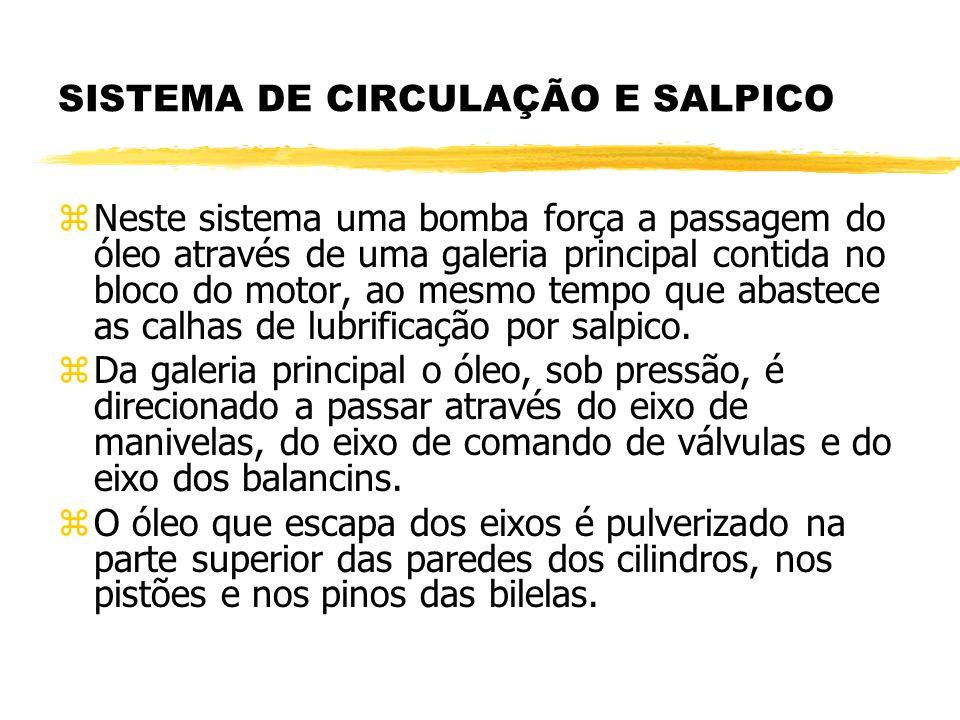 SISTEMA DE CIRCULAÇÃO E SALPICO