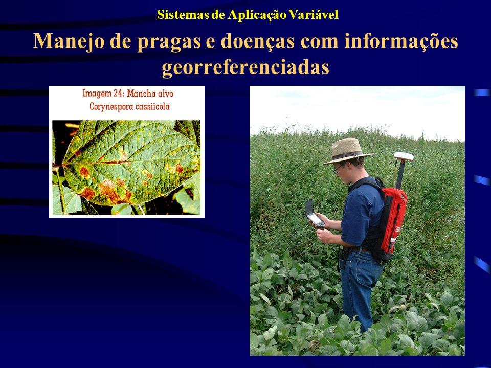 Manejo de pragas e doenças com informações georreferenciadas