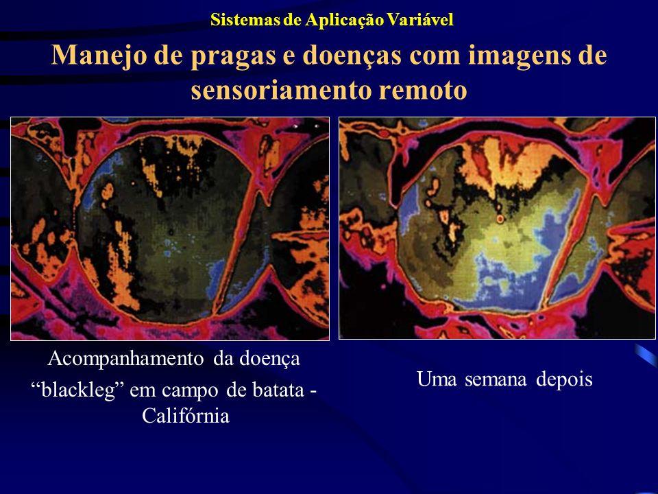 Manejo de pragas e doenças com imagens de sensoriamento remoto