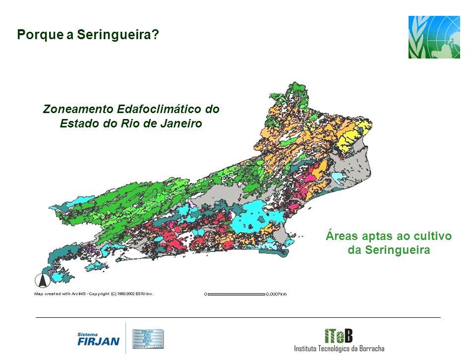 Porque a Seringueira. Zoneamento Edafoclimático do Estado do Rio de Janeiro.