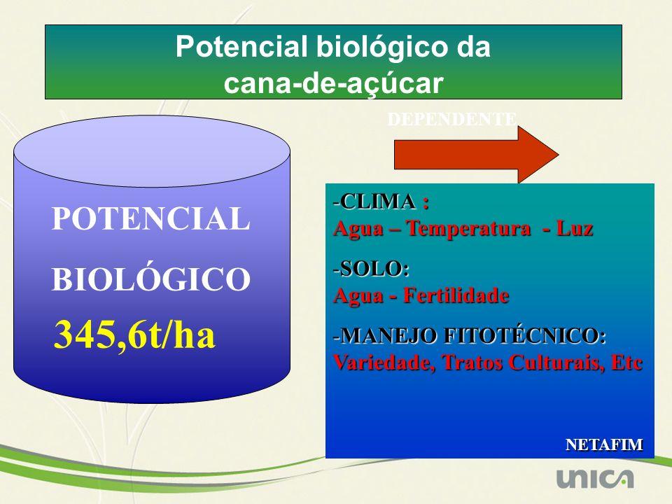 Potencial biológico da cana-de-açúcar