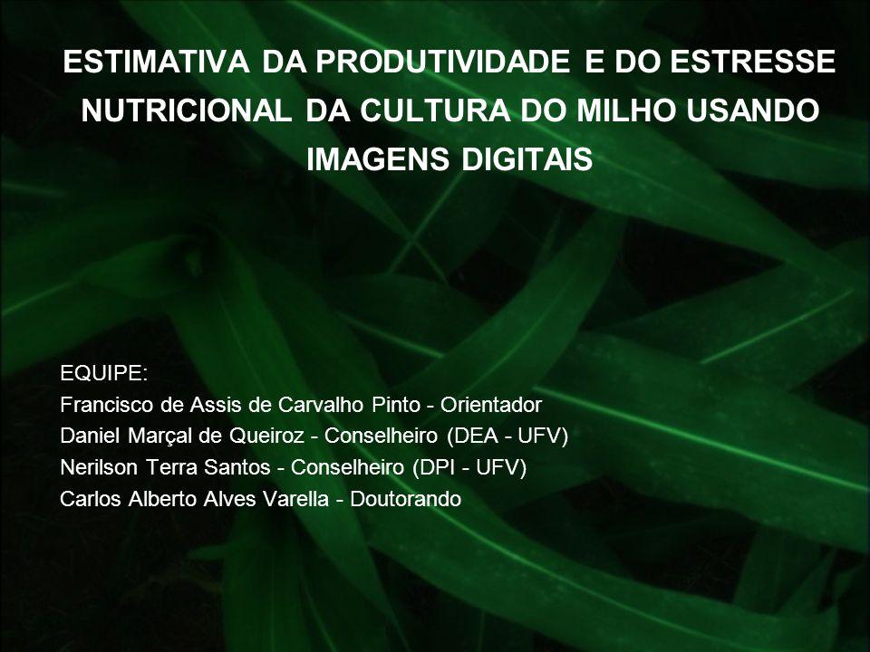 ESTIMATIVA DA PRODUTIVIDADE E DO ESTRESSE NUTRICIONAL DA CULTURA DO MILHO USANDO IMAGENS DIGITAIS