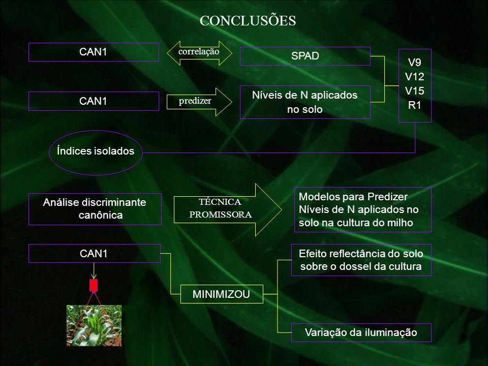 CONCLUSÕES CAN1 SPAD V9 V12 V15 R1 CAN1 Níveis de N aplicados no solo