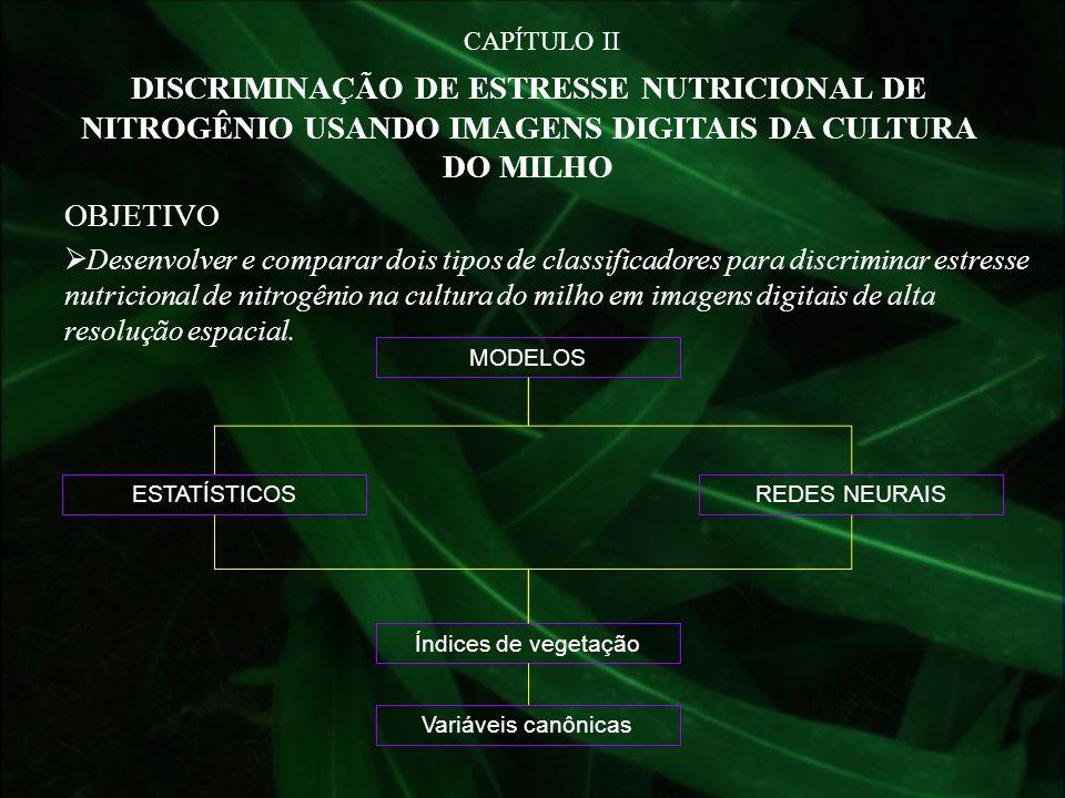 CAPÍTULO II DISCRIMINAÇÃO DE ESTRESSE NUTRICIONAL DE NITROGÊNIO USANDO IMAGENS DIGITAIS DA CULTURA DO MILHO.
