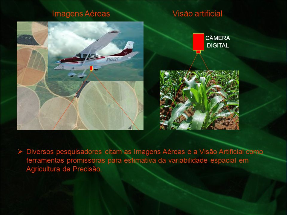 Imagens Aéreas Visão artificial