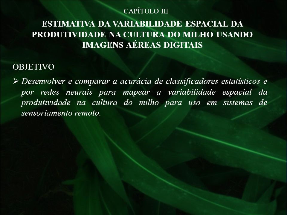 CAPÍTULO IIIESTIMATIVA DA VARIABILIDADE ESPACIAL DA PRODUTIVIDADE NA CULTURA DO MILHO USANDO IMAGENS AÉREAS DIGITAIS.