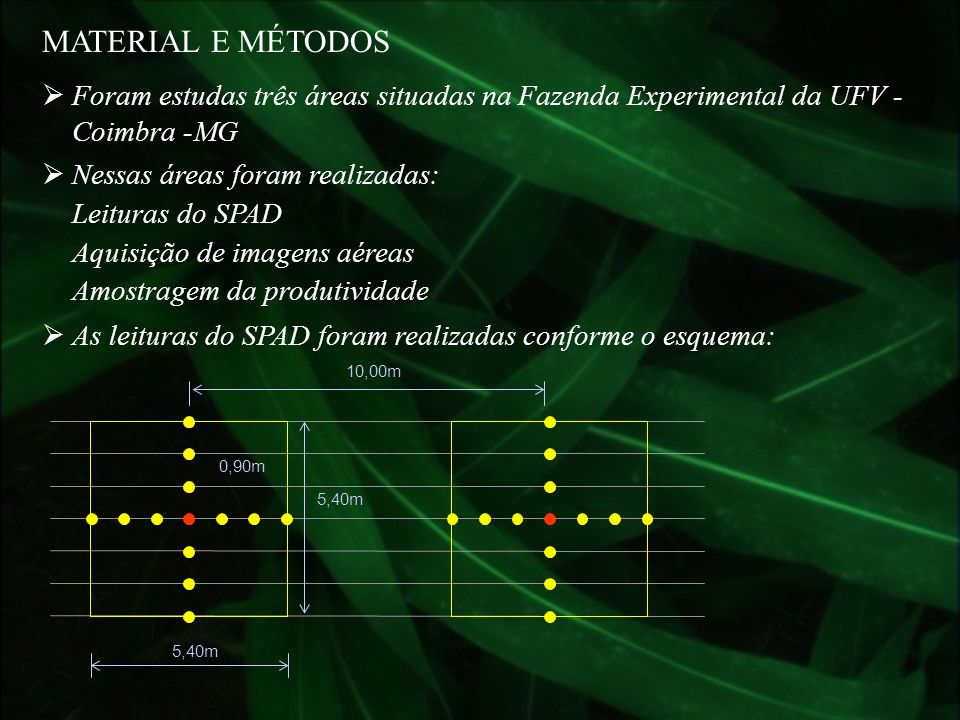 MATERIAL E MÉTODOSForam estudas três áreas situadas na Fazenda Experimental da UFV - Coimbra -MG. Nessas áreas foram realizadas: