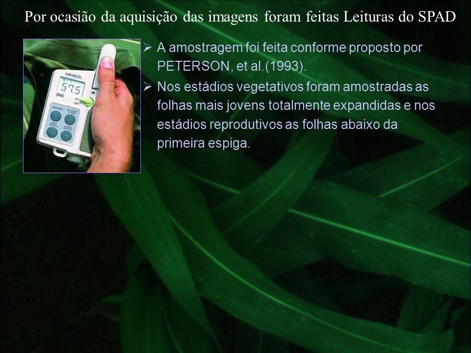 Por ocasião da aquisição das imagens foram feitas Leituras do SPAD
