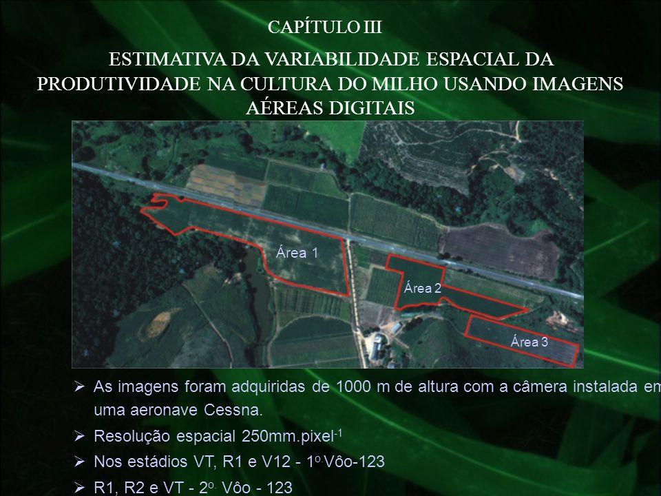 CAPÍTULO III ESTIMATIVA DA VARIABILIDADE ESPACIAL DA PRODUTIVIDADE NA CULTURA DO MILHO USANDO IMAGENS AÉREAS DIGITAIS.