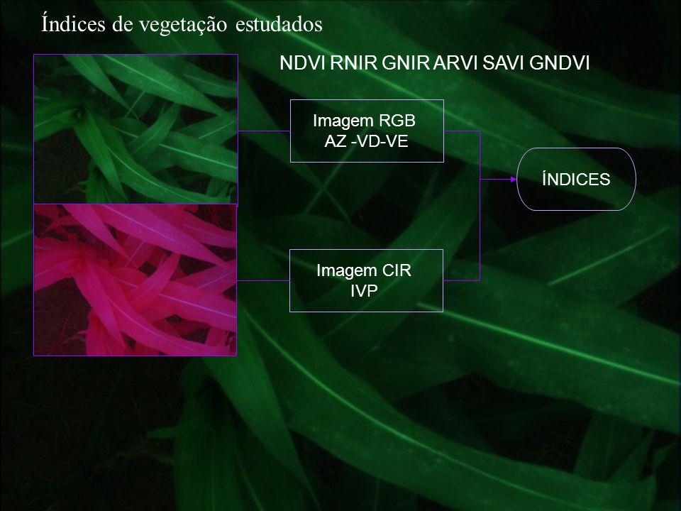 Índices de vegetação estudados