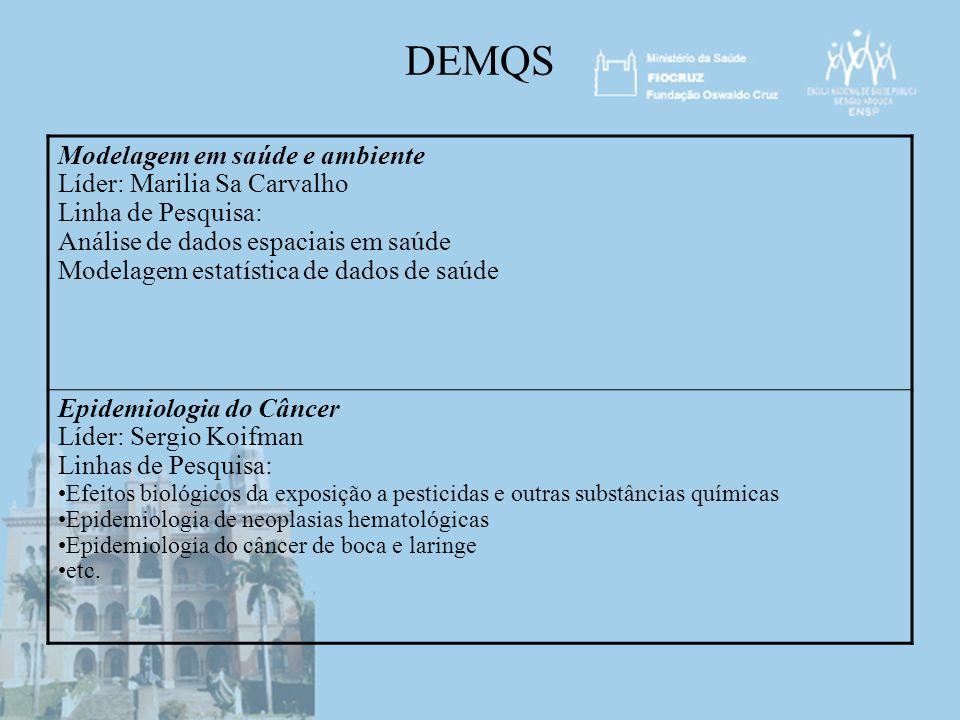 DEMQS Modelagem em saúde e ambiente Líder: Marilia Sa Carvalho
