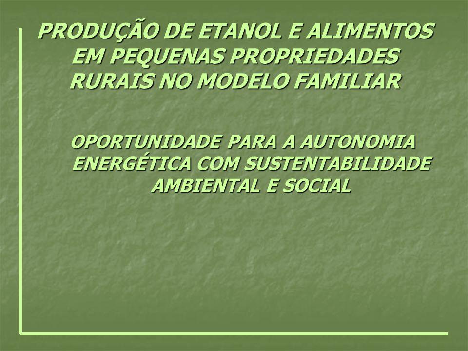 PRODUÇÃO DE ETANOL E ALIMENTOS EM PEQUENAS PROPRIEDADES RURAIS NO MODELO FAMILIAR