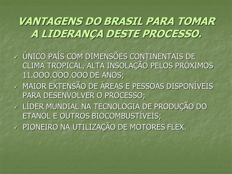 VANTAGENS DO BRASIL PARA TOMAR A LIDERANÇA DESTE PROCESSO.