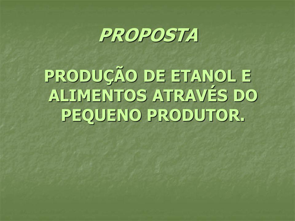 PRODUÇÃO DE ETANOL E ALIMENTOS ATRAVÉS DO PEQUENO PRODUTOR.