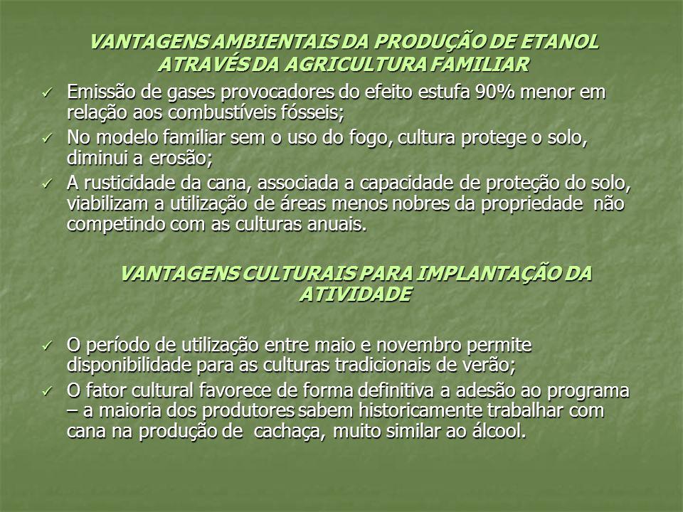 VANTAGENS CULTURAIS PARA IMPLANTAÇÃO DA ATIVIDADE