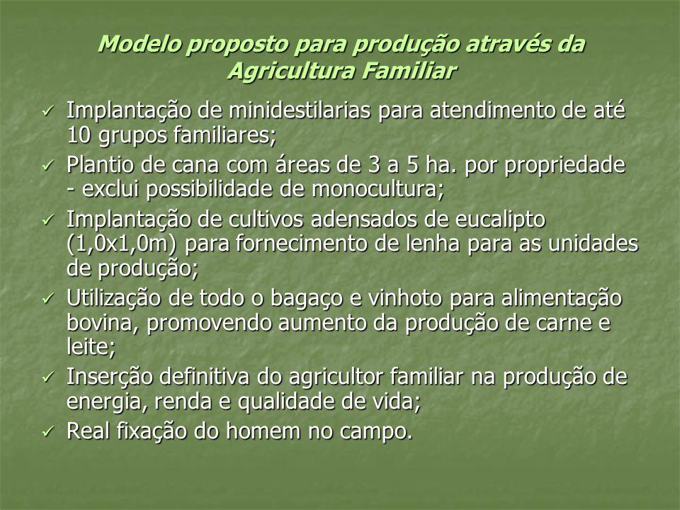 Modelo proposto para produção através da Agricultura Familiar
