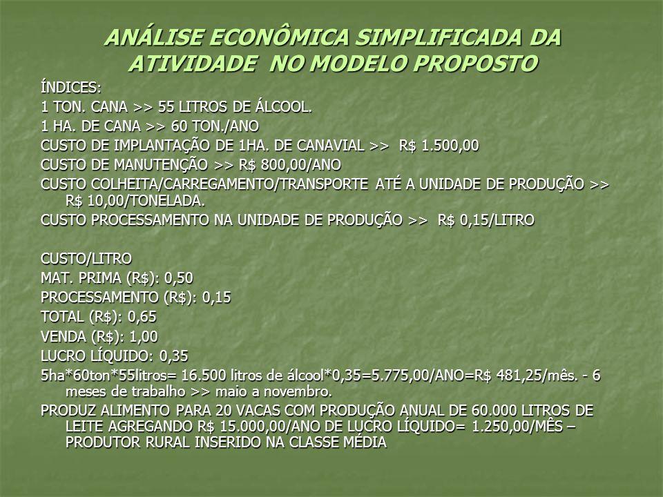 ANÁLISE ECONÔMICA SIMPLIFICADA DA ATIVIDADE NO MODELO PROPOSTO