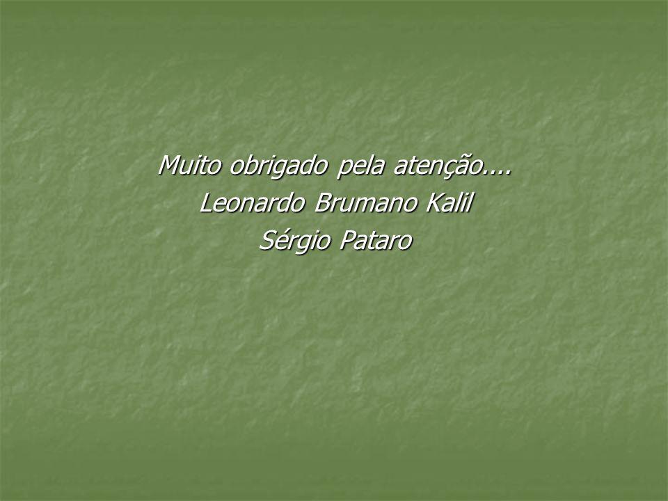 Muito obrigado pela atenção.... Leonardo Brumano Kalil Sérgio Pataro