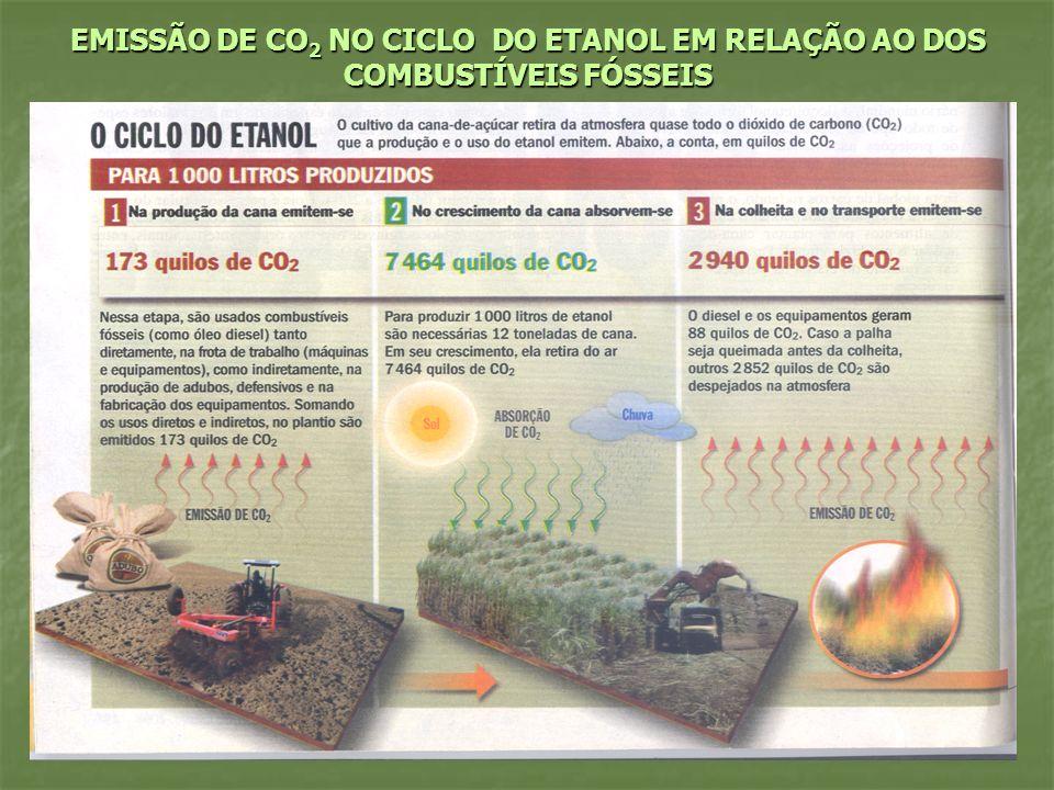 EMISSÃO DE CO2 NO CICLO DO ETANOL EM RELAÇÃO AO DOS COMBUSTÍVEIS FÓSSEIS