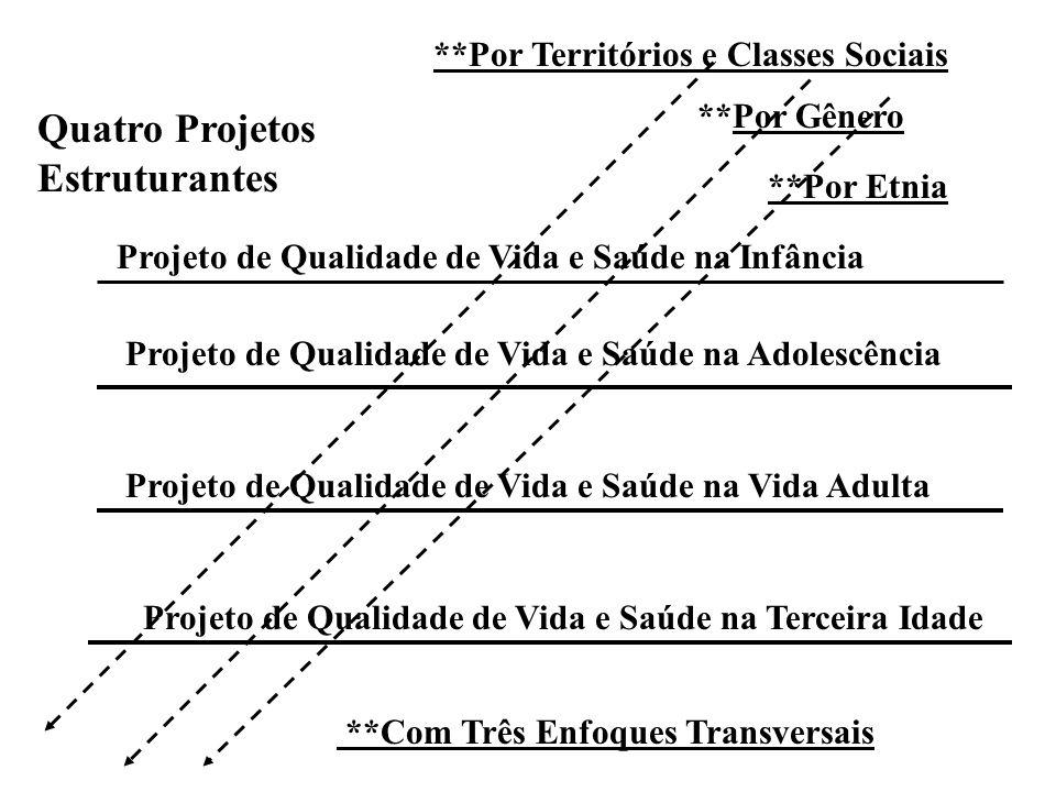 Quatro Projetos Estruturantes